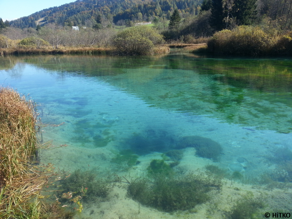 Zelenci (a spring of Sava Dolinka)